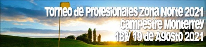 Banner Torneo Profesionales ZN 2021